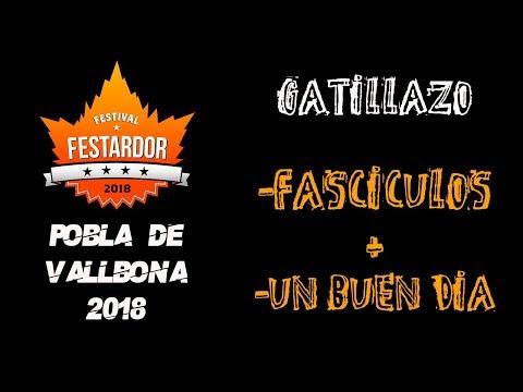 GATILLAZO -Fasciculo + Un buen dia 🔥#FESTARDOR 2018🔥 #eldirectomasanimal #gatillazo